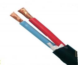 WDZB-RYY 无卤低烟阻燃护套软电缆